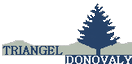 triangel logo